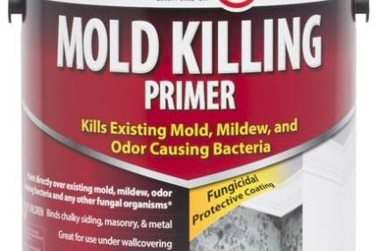 Zinsser Mold Killing Primer 2014 06 16 Walls