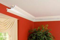 Elegant Tray Ceilings