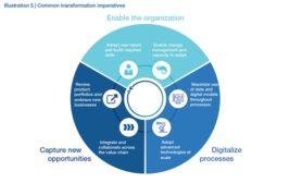 enableorganization