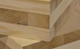 Wood Myths