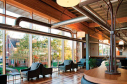 green alternatives to conventional building materials